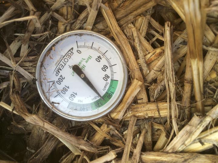 bd-compost